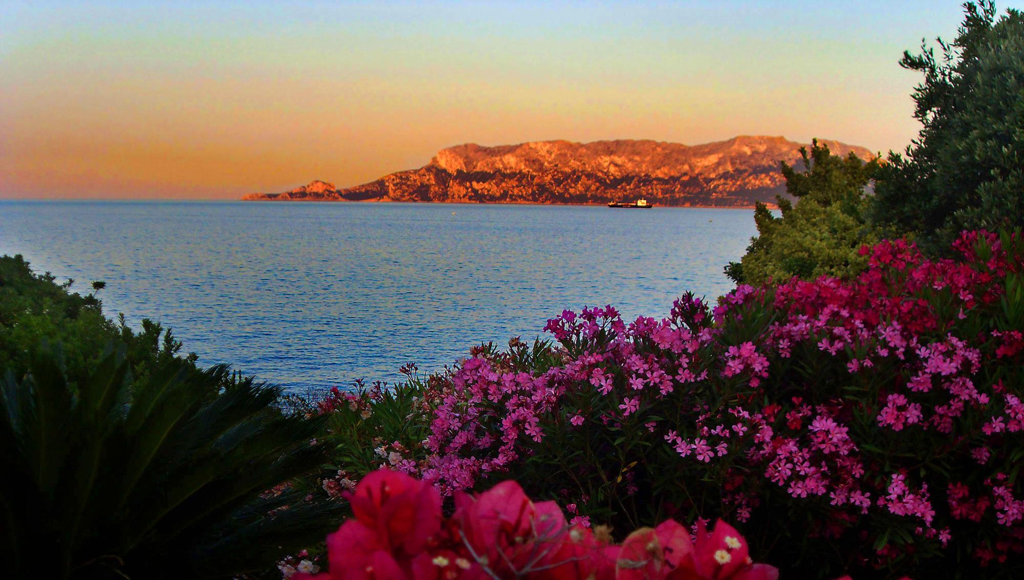 Appartamenti vacanze sul mare cala banana sardegna nodu for Vacanze a barcellona sul mare
